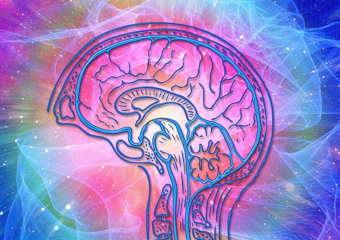 approche-cognitivo-comportementale